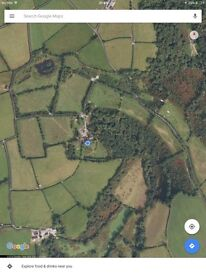 11 ACRES STANDING HAY / SILAGE Near BRECHFA.