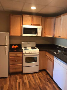 Beautiful 1 bedroom suite for sublease, available immediately