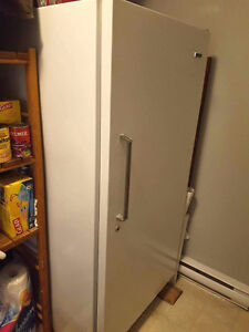 Large Freezer for Quick Sale