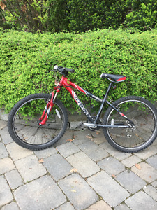 GIANT Youth Mountain Bike