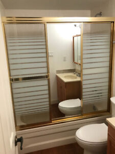 Used Polished Brass Shower Doors