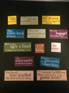 Shakespeare insults magnets