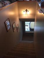 Residential painter