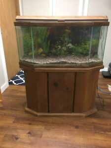 25 Gallon Aquarium with Wooden Stand