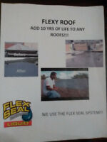 LEAKY ROOF?RUSTED ROOF?GIVE FLEXY ROOF A TRY!