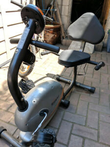 Tempo Fitness Indoor Training Bike