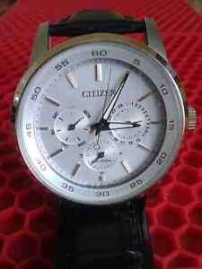 citizen Eco Drive men's  watch (new)