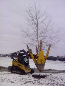 Tree Spade Service - Large, Instant Trees London Ontario image 3