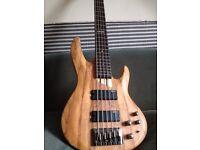 5 string bass/ STEAL OF A DEAL!!! ESP LTD B-205SM/
