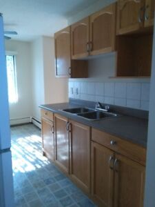 One bedroom apartment for rent at 10740-112 Street In Downtown