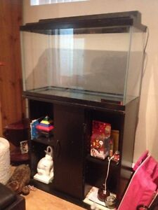28 Gallon ( Big ) Fish tank and Stand
