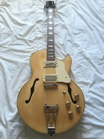 Unbranded Archtop Hollow Bodied Guitar