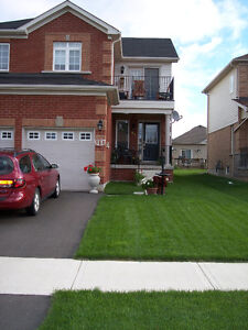 Residential Mowing Starting At $65, Cambridge Kitchener Area image 4