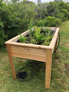 Cedar Planter/herb garden