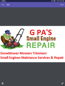 Snowblower Lawmower and Other Types of Small engine repairs