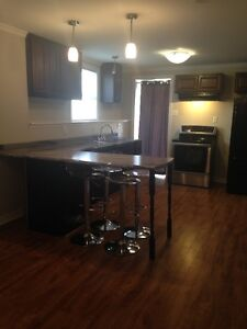1BR Above Ground Basement Apt Avil March 1
