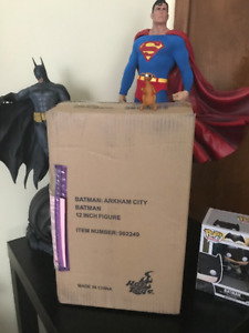 Batman: Arkham City Sixth Scale Figure by Hot Toys Never Opened