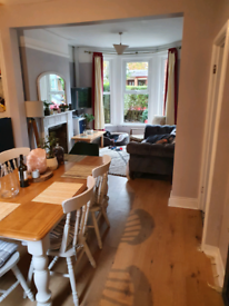 Small double room to rent in Ormeau road - dog lovers need only apply!