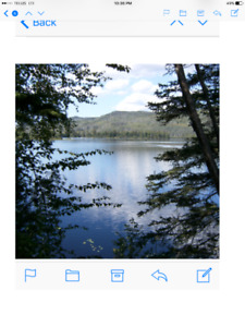 Gorgeous 5.49 acre lakefront property with 330 feet waterfront