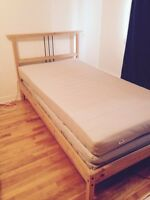 50$ single bed frame/50$ base de lit simple