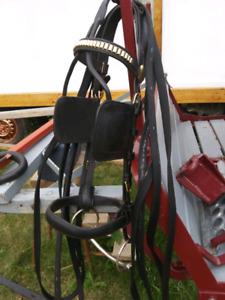 Pony or halflinger harness