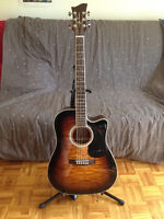 Electro Acoustic Guitar Jay Turser (guitar, tuner, case, stand)