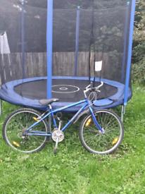 cheap small giants bike £20