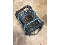 Lobster/Crab Pot Used Bargain Fishing