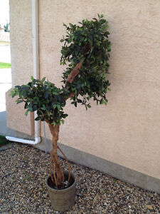 Highest Quality Artificial Silk Trees - Only 2 plants left!