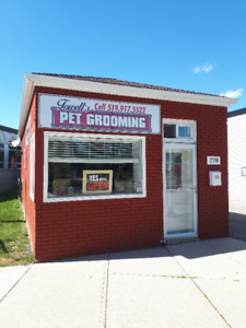 Well Established Pet Grooming Business For Sale