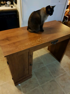 Small desk (cat not included)