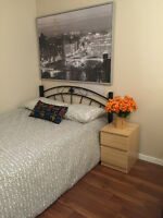 *****looking for a female roommate (Dec 1) (Main - King Edward)