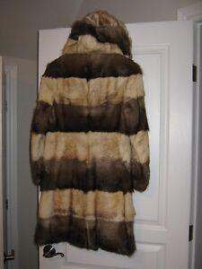 Vintage Muskrat Custom Fur Kawartha Lakes Peterborough Area image 2