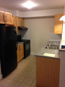 Spacious and Luxurious 1 Bedroom + Den - Downtown Barrington St.
