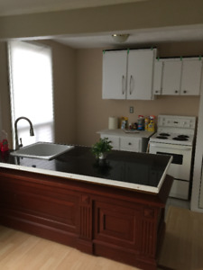 Newly Renovated 1 bed all inclusive, free parking!
