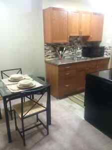 1 bdrm condo south Regina - Fully furnished avail May 1