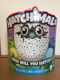 Hatchimals Draggles - Green