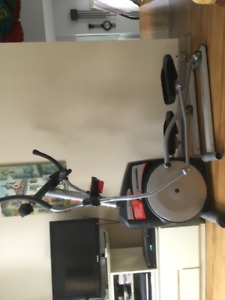 Exerciseur elliptique Schwinn431