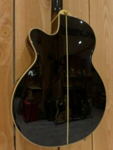 Hybrid acoustic/electric guitar for sale.