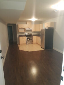 2 Bedroom Basement Suite Clayton Heights with Laundry