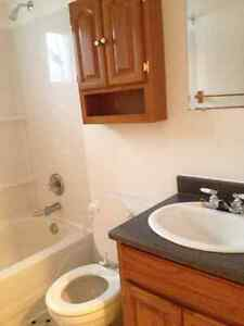 $750.00 Heat and Hot Water Included 2 Bedroom Mt. Pearl St. John's Newfoundland image 9