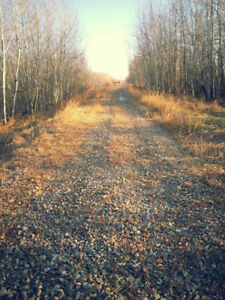 Looking for Land (Acreage)