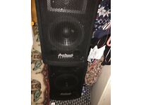 Pro Sound Speakers