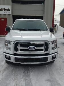 2015 Ford F-150 Fourgonnette, fourgon