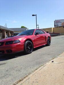 2003 Mustang GT Cobra Clone Very Clean May Trade