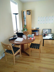 FULLY FURNISHED 4 1/2 IN THE MCGILL GHETTO (JULY-AUGUST SUBLET)