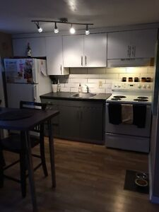 Fully Renovated Bachelor - close to Beechwood Village