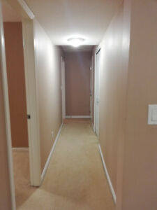 2 Bdrm basement suite for rent Willoughby Height