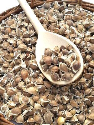 130 x Moringa Oleifera Seeds Hand Selected Finest Immune Quality NON-GMO herb
