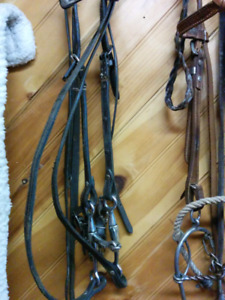 Western bridle and reins.